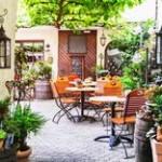 カフェと観葉植物