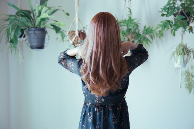 観葉植物に囲まれた、綺麗な巻き髪の女性の後ろ姿